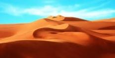 Последствия опустынивания