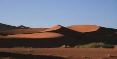 Причины опустынивания