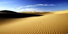 Правила поведения в пустыне