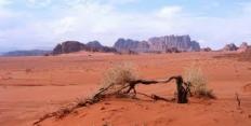 Применение территории пустынь