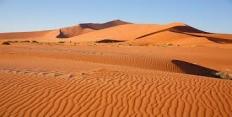 Пустыни умеренного пояса