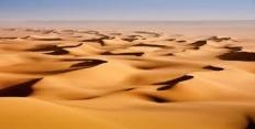 Экстремальная ситуация в пустыне